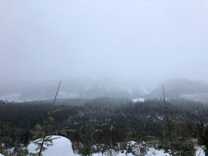 Foggy views from Begbie Shoulder