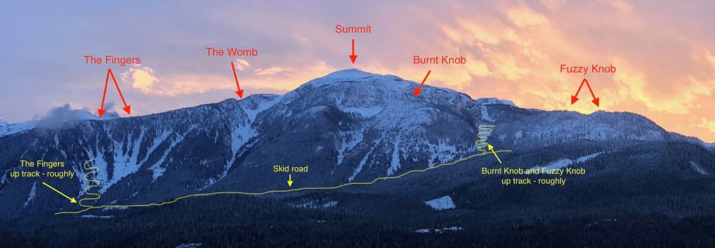 Mt. Macpherson alpine touring options
